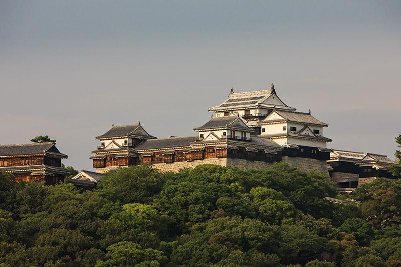 伊予松山城の天守